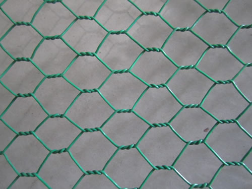 Hexagonal Mesh Chicken Netting