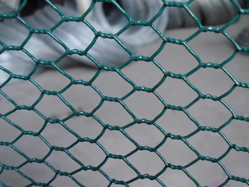 Pvc Coated Chicken Wire Mesh Chicken Wire Products